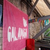 """""""Galapagai 2016"""": laukia A. Užkalnio erotinė situacija, Jazzu romantika ir reperių maudynės ežere"""